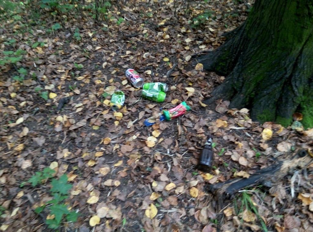 мусор возле дерева